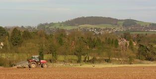 Traktor auf dem Gebiet, das Vögel jagt Lizenzfreies Stockbild