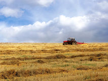 Traktor auf dem gelben Feld Stockfotos