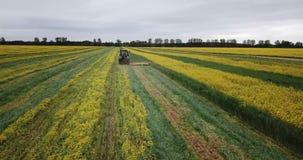 Traktor auf einem gelbgr?nen Rapsfeld stock video footage