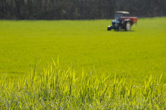 Traktor auf einem grünen Gebiet lizenzfreie stockbilder