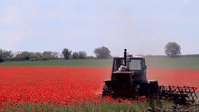 Traktor auf einem Mohnblumenfeld stock footage