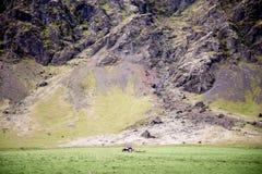 Traktor auf Feld in Island Stockfotos