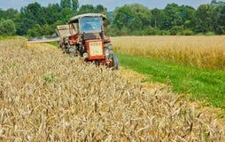 Traktor auf Feldern Stockfoto