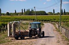 Traktor auf Weinberg Stockbild