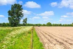 Traktor, der an acultivated Feld in einer Landschaftslandschaft arbeitet Stockfotos