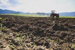 Traktor, der auf dem Feld pflügt Lizenzfreie Stockfotografie