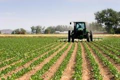 Traktor, der die Felder pflügt Lizenzfreies Stockfoto