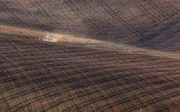 Traktor, der ein abgestreiftes Feld in Süd-Moray bei Sonnenuntergang pflügt Stockbild
