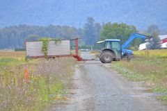 Traktor, der Erzeugnis in großen Kasten schleppt stockfoto