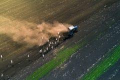 Traktor, der Feld am Frühling, Vogelperspektive kultiviert Stockfotografie