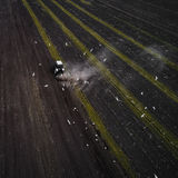 Traktor, der Feld am Frühling, Vogelperspektive kultiviert Lizenzfreie Stockbilder