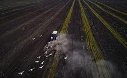 Traktor, der Feld am Frühling, Vogelperspektive kultiviert Stockfoto
