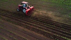 Traktor, der Feld am Fr?hling, Luftsonnenuntergangansicht kultiviert stock video