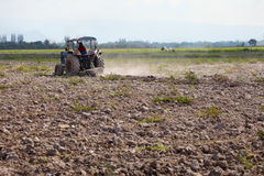 Traktor, der Feld am sonnigen Tag pflügt Stockfotos