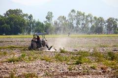 Traktor, der Feld am sonnigen Tag pflügt Lizenzfreie Stockfotos