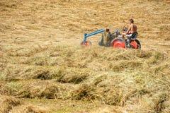 Traktor, der frisches Heu auf Wiese in den Alpen sammelt Stockbilder