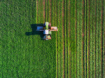 Traktor, der grünes Feld mäht Lizenzfreies Stockbild