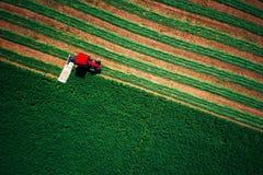 Traktor, der grünes Feld, Vogelperspektive mäht Lizenzfreies Stockfoto