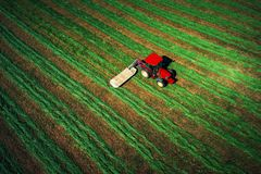 Traktor, der grünes Feld, Vogelperspektive mäht Stockbild
