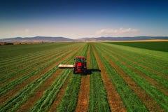 Traktor, der grünes Feld, Vogelperspektive mäht Stockfotografie