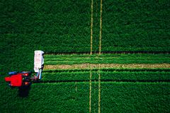 Traktor, der grünes Feld, Vogelperspektive mäht Lizenzfreie Stockbilder
