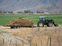 Traktor, der Heu auf einem Bauernhof in Kamloops zieht Stockbild