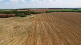 Traktor, der Land für das Säen von sechzehn Reihen von der Luft, von Konzept der Bearbeitung, Säen, Feld, Traktor und Produktion  stock video