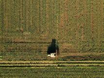 Traktor, der Maiserntefeld, Vogelperspektive kultiviert lizenzfreies stockbild