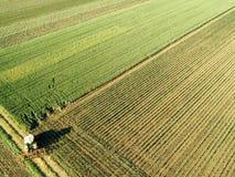 Traktor, der Maiserntefeld, Vogelperspektive kultiviert stockfotos