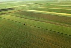 Traktor, der Maiserntefeld, Vogelperspektive kultiviert stockfoto