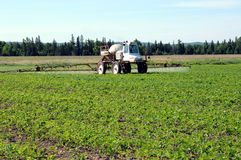 Traktor, der Schädlingsbekämpfungsmittel spaying ist Lizenzfreies Stockfoto