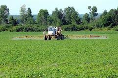 Traktor, der Schädlingsbekämpfungsmittel spaying ist Lizenzfreie Stockfotos