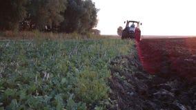 Traktor, der Schwarzerdepflugfeld bei Sonnenuntergang pflügt stock footage
