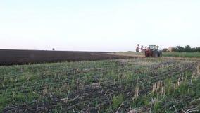 Traktor, der Schwarzerdepflugfeld bei Sonnenuntergang pflügt stock video footage