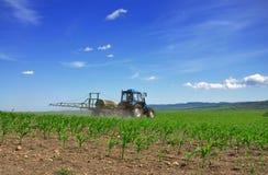 Traktor, der zurück die Felder pflügt Stockfoto