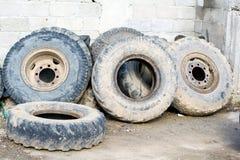 Traktor ermüdet die verwendete Art von der Wand, geschmiert mit Schlamm Lizenzfreie Stockfotografie