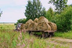 Traktor gefahrenes frisches Heu auf speziellem Ackerwagen Lizenzfreie Stockfotos