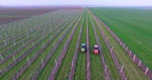 Traktor genom att använda en sprejare för luftdammmaskin med en kemiskt insekticid, svavel eller svampdödande medel i vingården a stock video