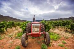Traktor i en vingård Royaltyfri Fotografi