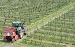 Traktor im Weinberg Stockfotografie