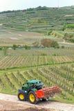 Traktor im Weinberg Stockfoto