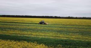 Traktor mäht gelbe Rapssamenfeldvogelperspektive stock footage