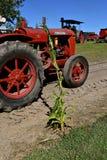 Traktor McCormick Deering W-30 und ein Stiel von Mais stockbilder