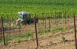 Traktor med plogen, som släpet, på arbete i vingårdarna, mellan de gamla växterna och vinrankan rotade kneg som planterades preci arkivbilder