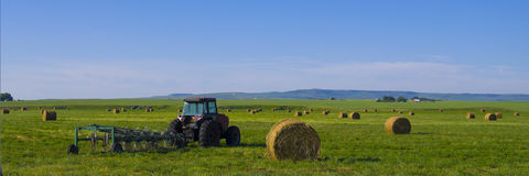 Traktor mit dem rototiller angebracht auf einem Heugebiet Lizenzfreie Stockbilder
