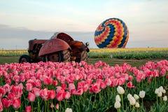Traktor mit Heißluft-Ballon Stockbild