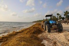Traktor på stranden i Dominikanska republiken av karibiskt arkivfoto