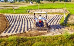 Traktor pflügt das Feld Stockfotografie