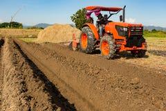 Traktor pflügt ein Feld im Frühjahr, das vom Traktor begleitet wird stockfoto
