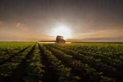 Traktor som besprutar bekämpningsmedel på sojabönafält med sprejaren på spr arkivfoto